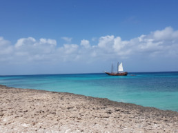 Aruba's Top Beaches